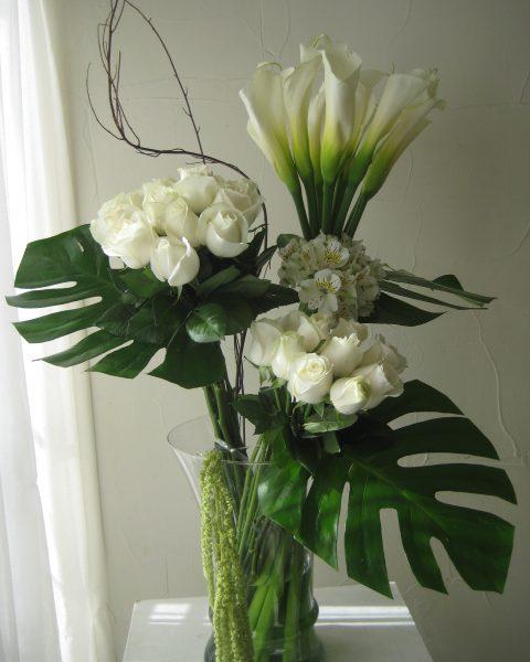 Alcatraces y rosas blancas