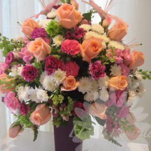 El más bello morado y rosa