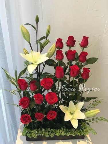 Escalonado 18 rosas rojas