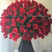Espectacular de 300 rosas rojas