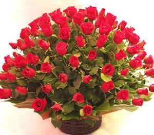 Espectacular 100 rosas rojas