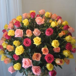 Espectacular 150 rosas de colores