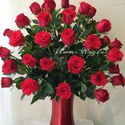 Hermoso florero rojo con 50 rosas rojas