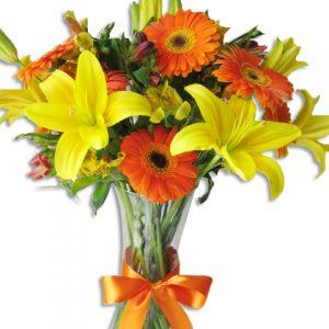 Gerberas, lilis y astromerias
