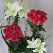Jardín rojo de 18 rosas
