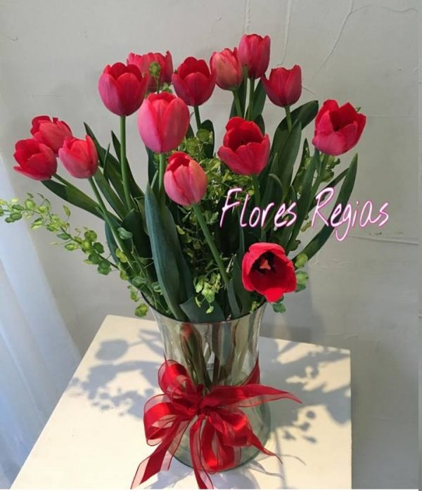 15 tulipanes rojos